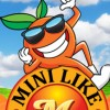 Package Design for Mini Like Me Mandarins