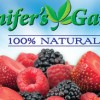 Package Design for Jennifer's Garden Frozen Fruit