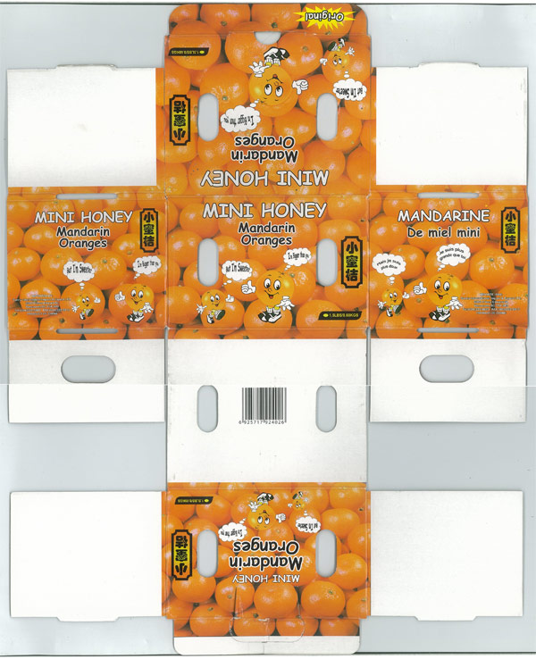 300 DPI Scan of Client's Flattened Orange Box