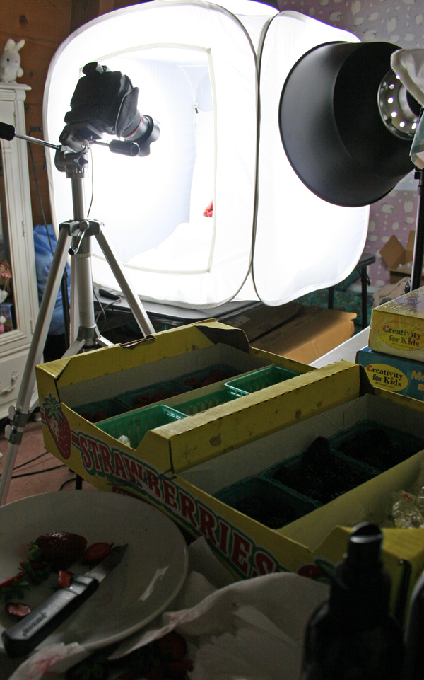 Studio Set Up for Shooting food products
