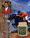 Sample Advertising Design and Branding for Equestrian Products Company